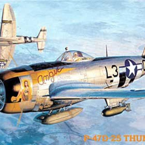 09140 1/48 P-47D Thunderbolt
