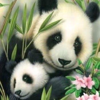 RBM JR SMALL PBN PANDA AND BABY
