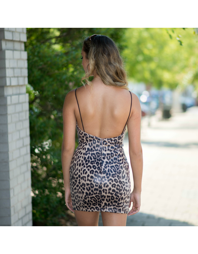 Dresses 22 Wild And Free Leopard Dress