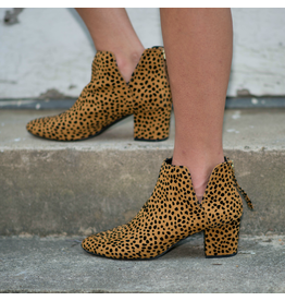 Shoes 54 Leopard Bootie