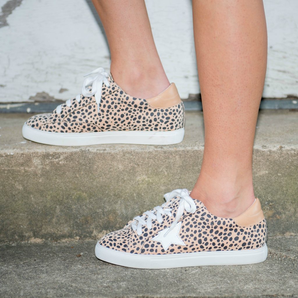 Shoes 54 Lots of Leopard to Love Star Sneakers