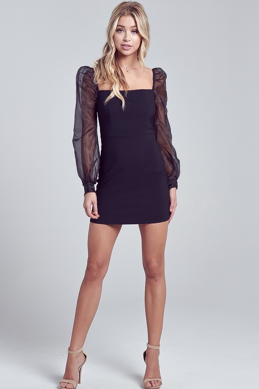 Dresses 22 Sheer Delight LBD