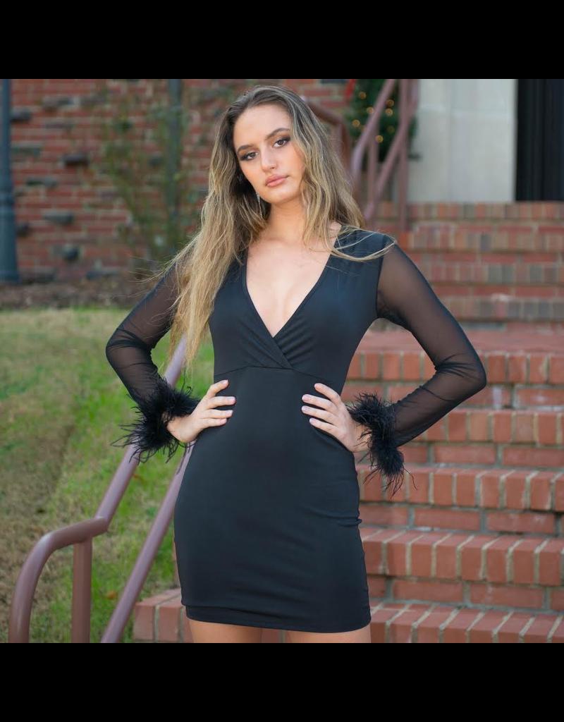 Dresses 22 Fab Feather Sleeve LBD