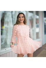 Dresses 22 Pretty Pom Pom Blush Pink Dress