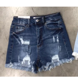 Shorts 58 Summer Sun Dark Wash Distressed Denim Shorts