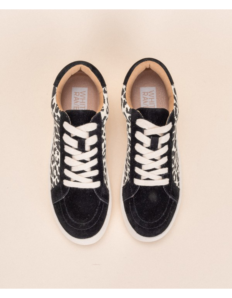 Shoes 54 Leopard Lace Up Sneakers