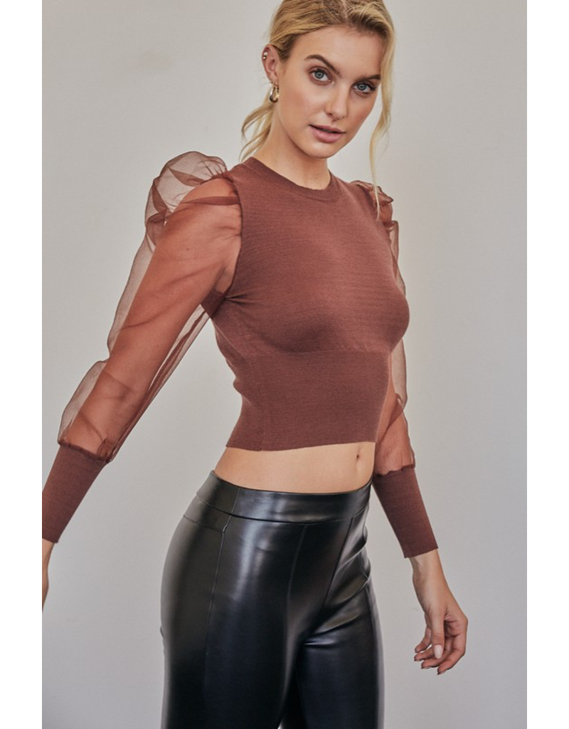 Tops 66 Sheer Delight Choclate Top