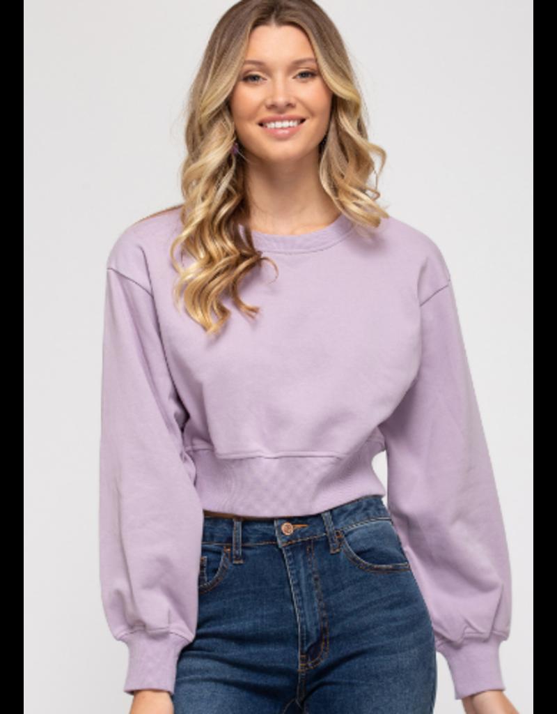 Tops 66 Lavender Cropped Sweatshirt