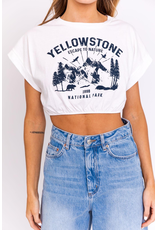 Tops 66 Yellow Stone Cropped Tee