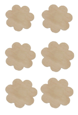 Accessories 10 Nipple Covers