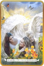 Angel Reading Cards and Book Set