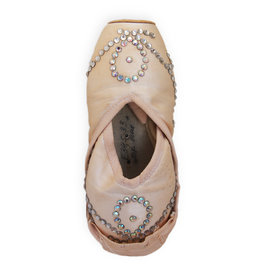 Cinderella Pointe Shoes: Larissa Ponomarenko