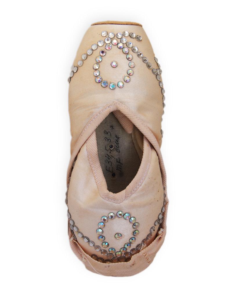 Cinderella Pointe Shoes: Larissa Ponomarenko