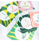 Chelsea and Marbles Jungle Milestone Card Set