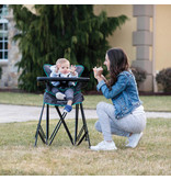 Baby Delight Go With Me Uplift- Deluxe Portable High Chair