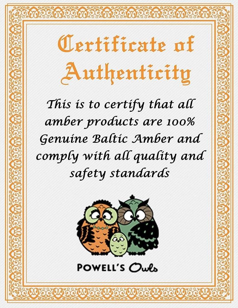 Powell's Owls Amber Teething Bracelet- Raw Unpolished