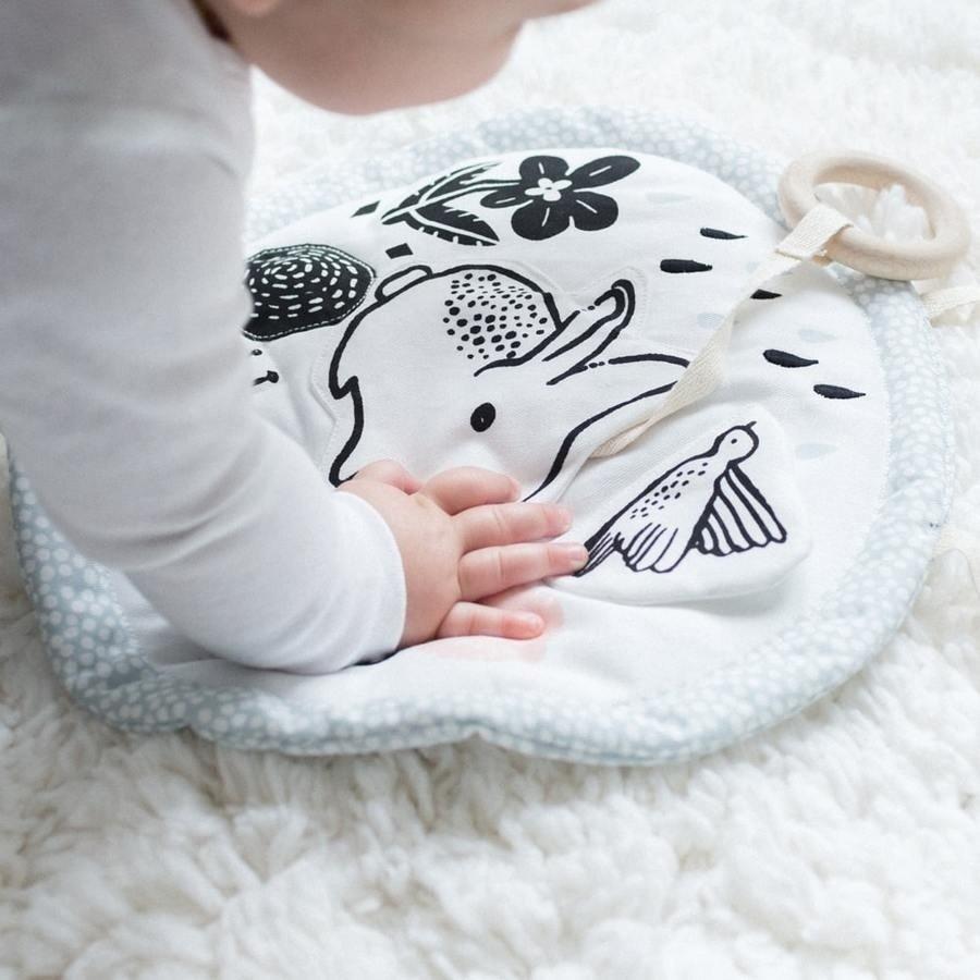 Infant Activity
