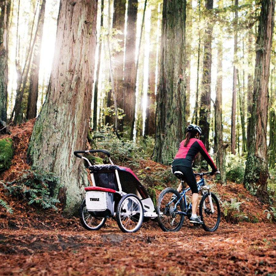 Bicycle Trailers and Child Seats