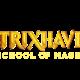 Strixhaven Commander Deck Case (5 Decks) Apr.23
