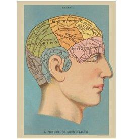 Poster Phrenology