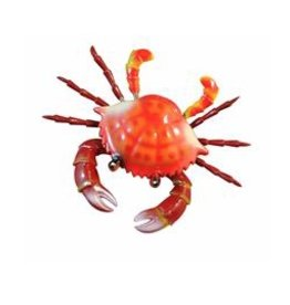 Fridge Magnet Crab Spring