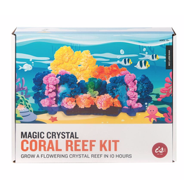 Kit - Make Your Own Crystal Coral Reef