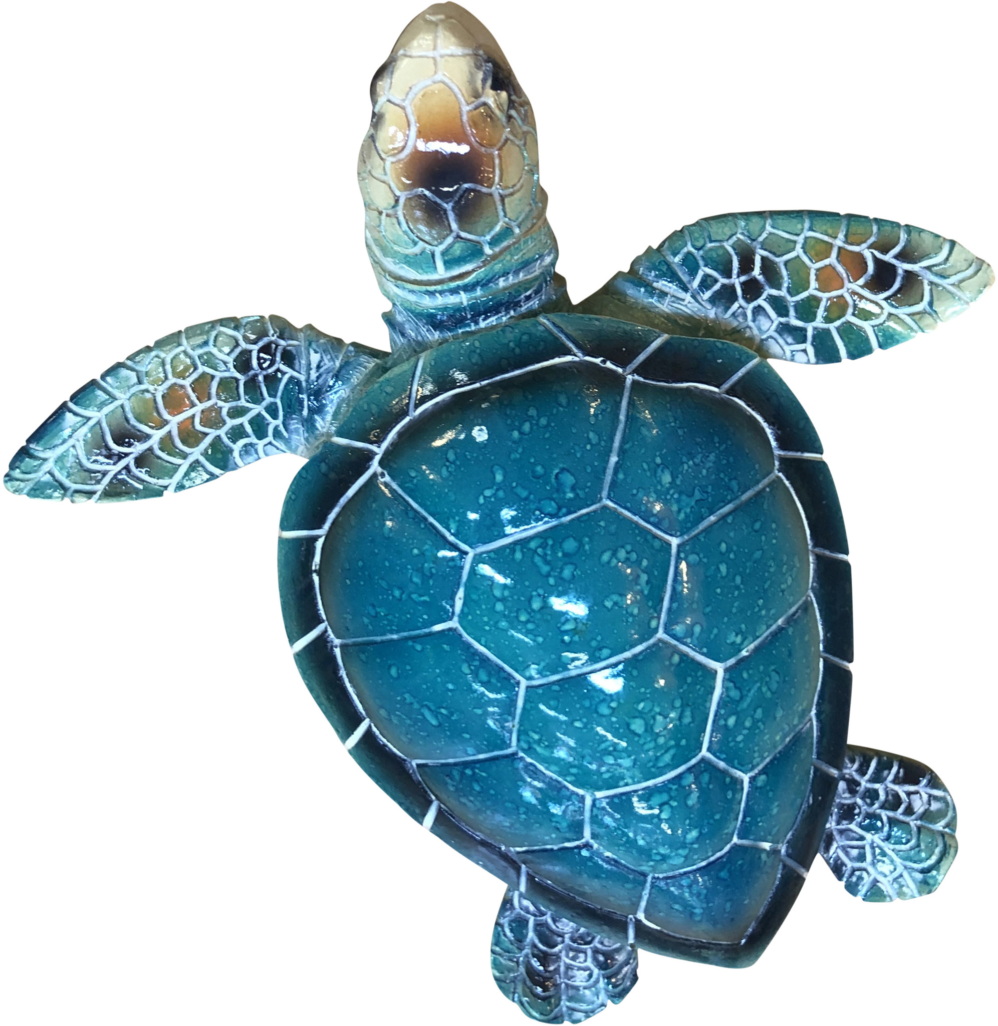 Colourful Turtle - Medium