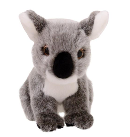 Animalia Koala Plush Toy