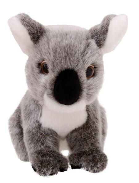 Animalia Koala Plush Toy
