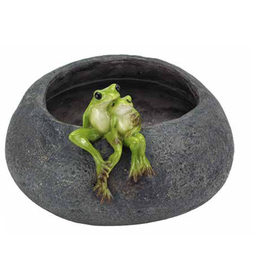 Froggy Lovers On Pot