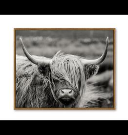 Highland Cow Wall Art B&W