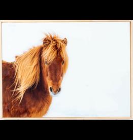 Framed Glasswork - Snow Pony