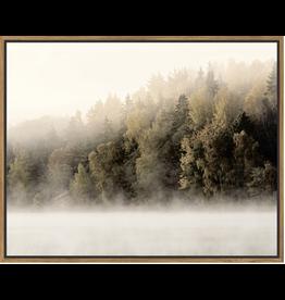 Floating Frame Misty Treeline