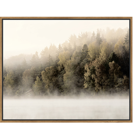 Framed Canvas - Misty Treeline
