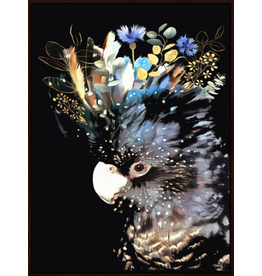 Framed Canvas - Floral Cockatoo Black Background (Small)