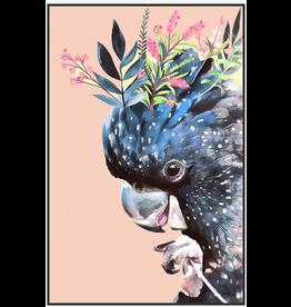 Peach Blossom Cockatoo