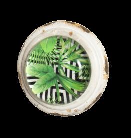 Palma Doorknob