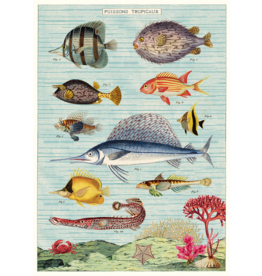 Poster Tropical Fish