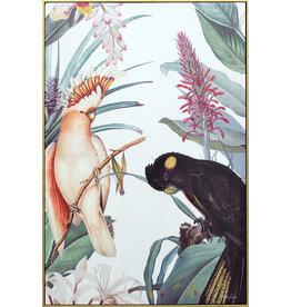 Medium Shadow Framed Painting of Cockatoos