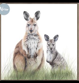 Framed Canvas - Wallaroos