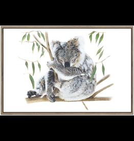 Framed Canvas - Koala
