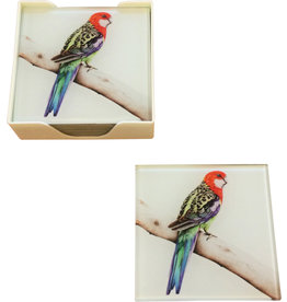 Coaster set of Glass Rosella