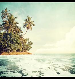 Canvas - Island Paradise