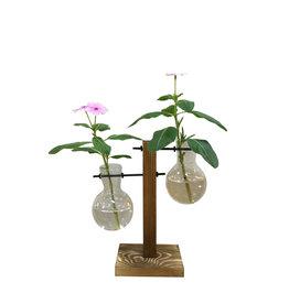 Bulb Vase Double Terrarium