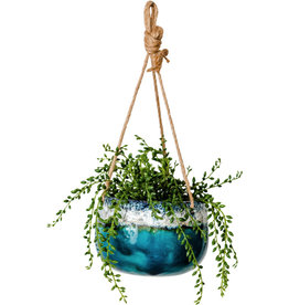 Pot Ceramic Planter - Aquarius