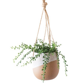 Pot Ceramic Planter - Zazu