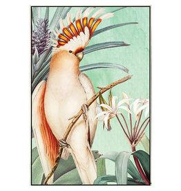 Framed Canvas - Parrot Apricot (Medium)