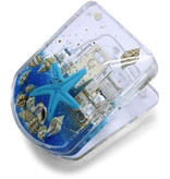 Shell Clip Magnet