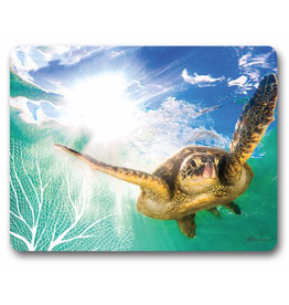 Placemats Set/6 - Turtle Swimming