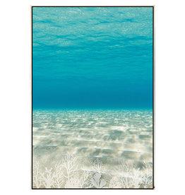 Framed Canvas - Ocean Floor